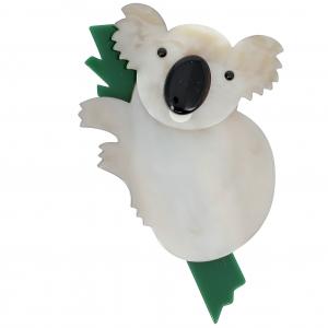 Koala blanc