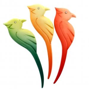 oiseau grave