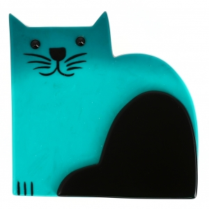 Chat Socrate turquoise