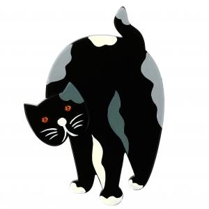 Chat Titus noir et gris