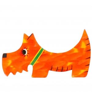 Chien Raoul orange nacre